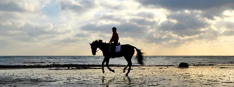 kernock_riding